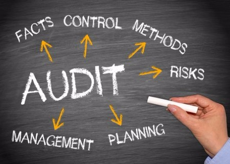 Health and Safety Audits | Apple Safety Services